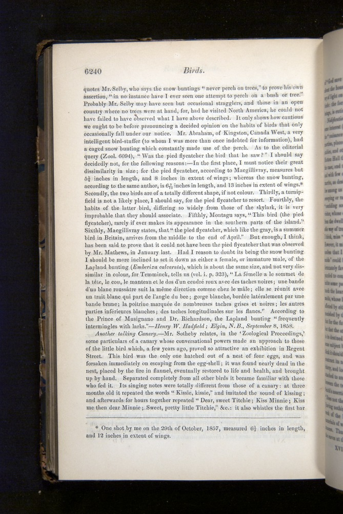 Image of Darwin-F349-1858-Zoologist-v16-06240