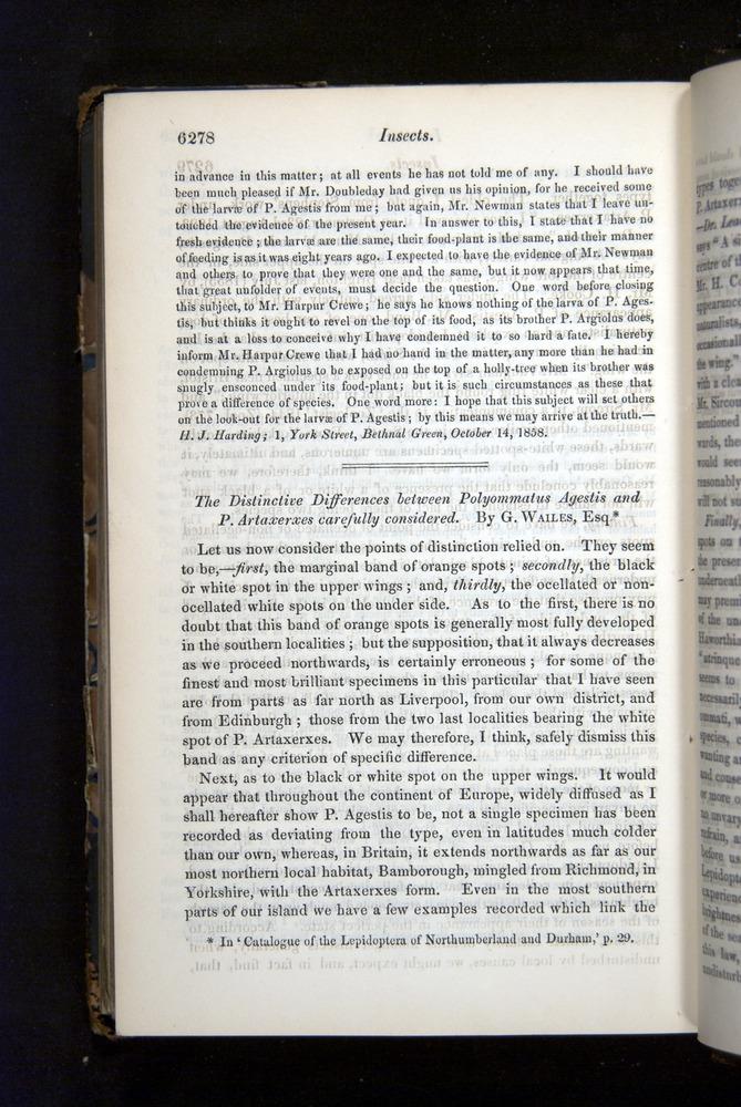 Image of Darwin-F349-1858-Zoologist-v16-06278