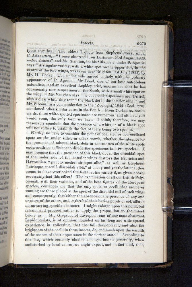 Image of Darwin-F349-1858-Zoologist-v16-06279