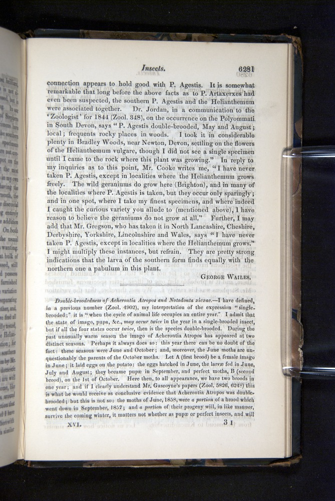 Image of Darwin-F349-1858-Zoologist-v16-06281