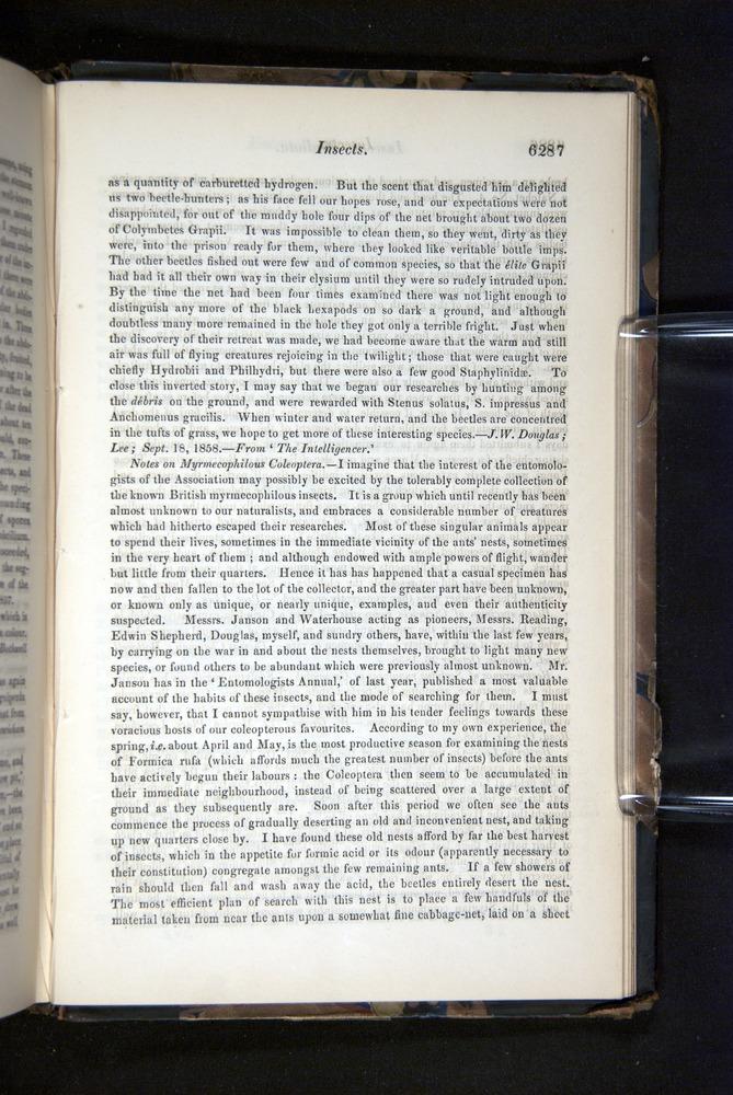 Image of Darwin-F349-1858-Zoologist-v16-06287