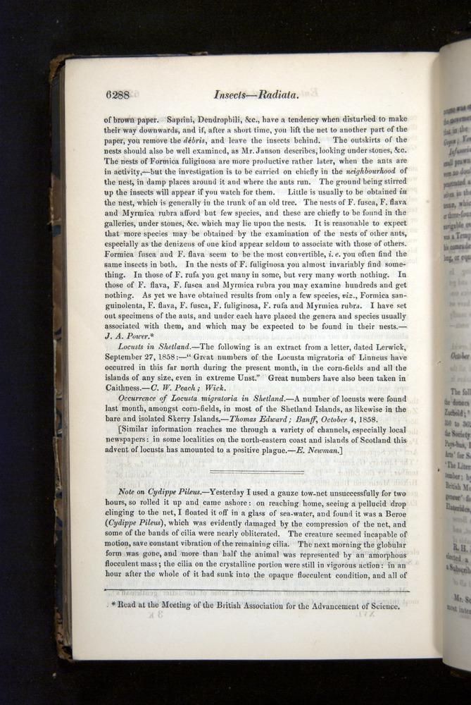 Image of Darwin-F349-1858-Zoologist-v16-06288