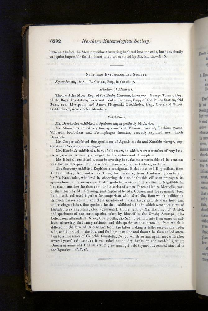 Image of Darwin-F349-1858-Zoologist-v16-06292