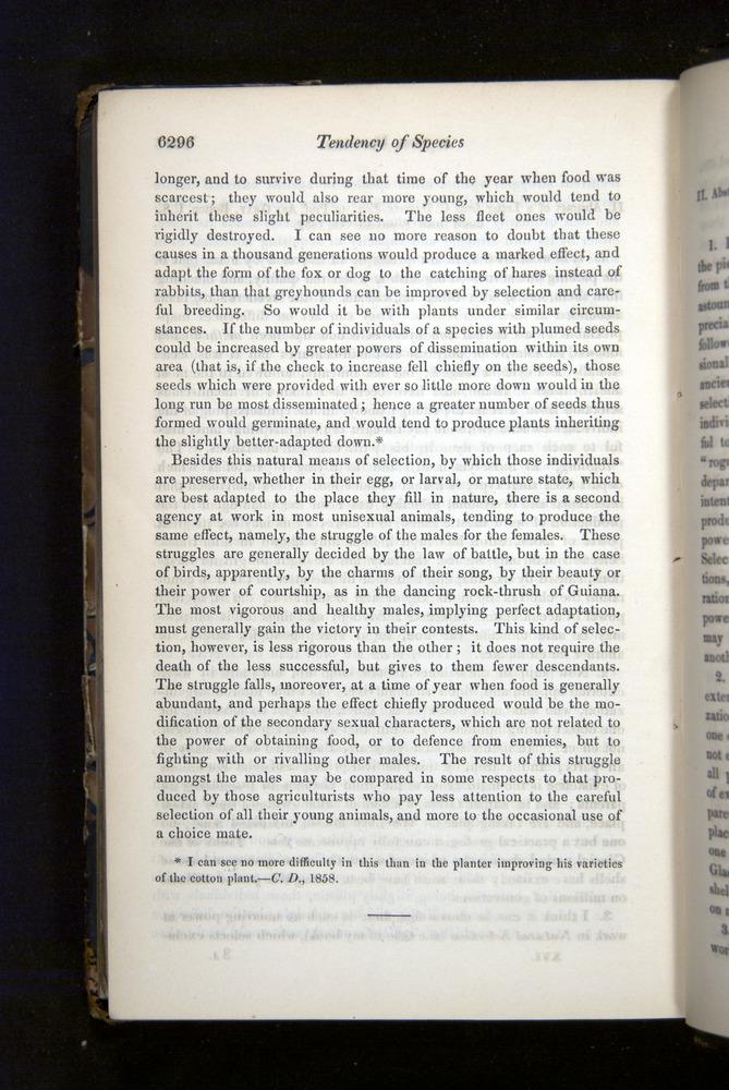 Image of Darwin-F349-1858-Zoologist-v16-06296