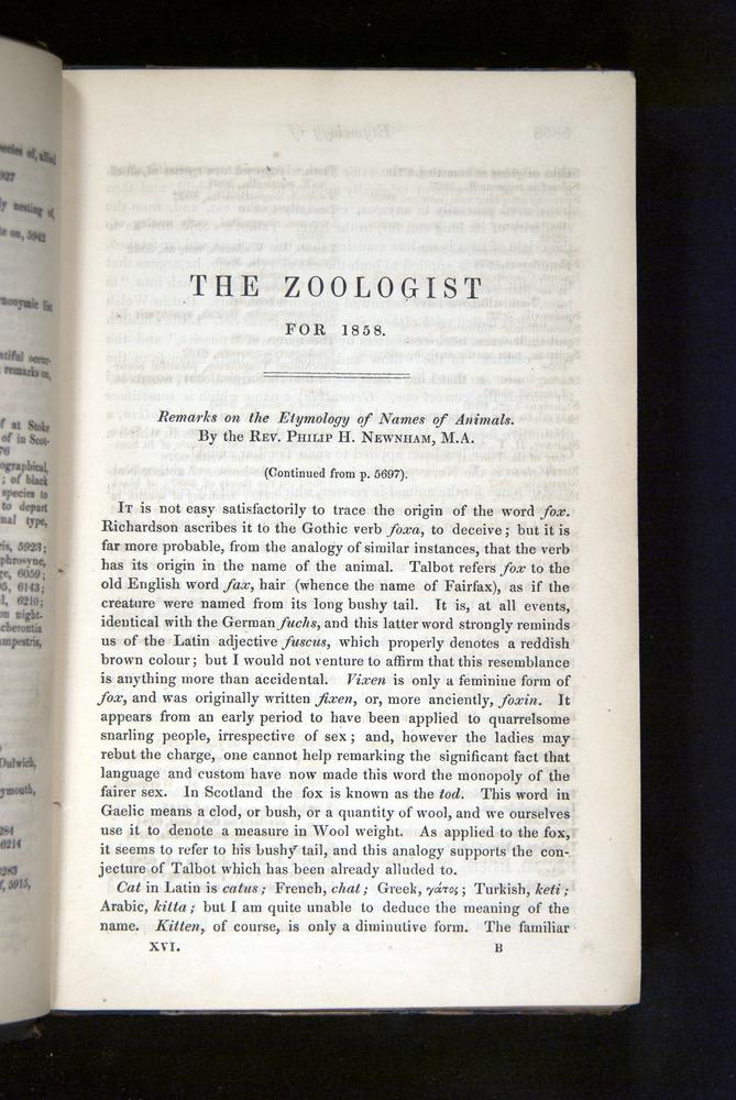 Image of Darwin-F349-1858-Zoologist-v16-5857