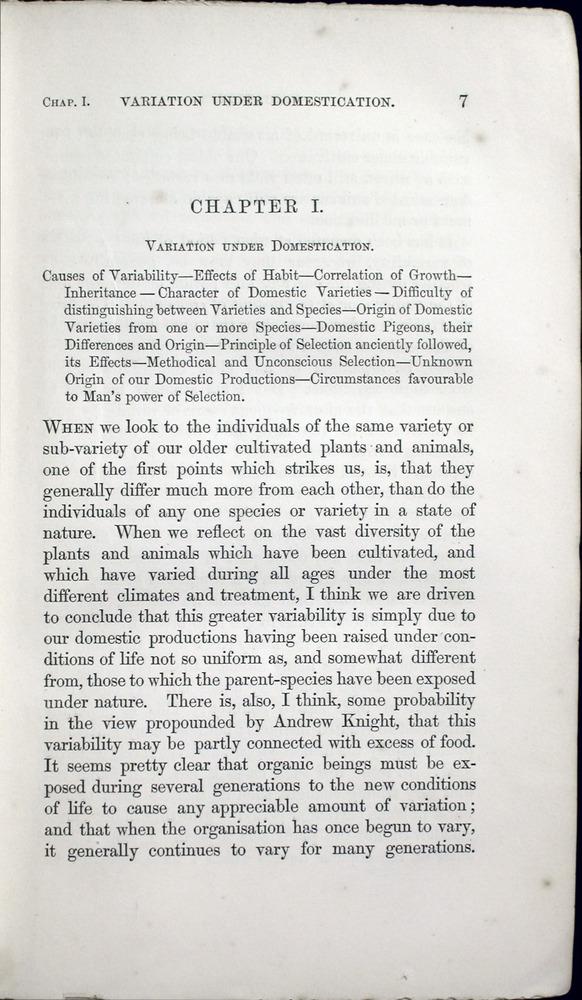 Image of Darwin-F373-cop1-1859-00007