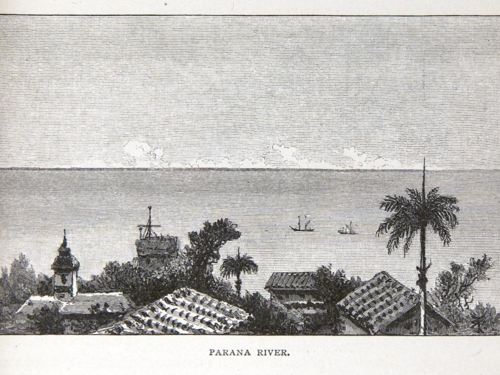 Image of Darwin-F64-1890-zzzz-det-133
