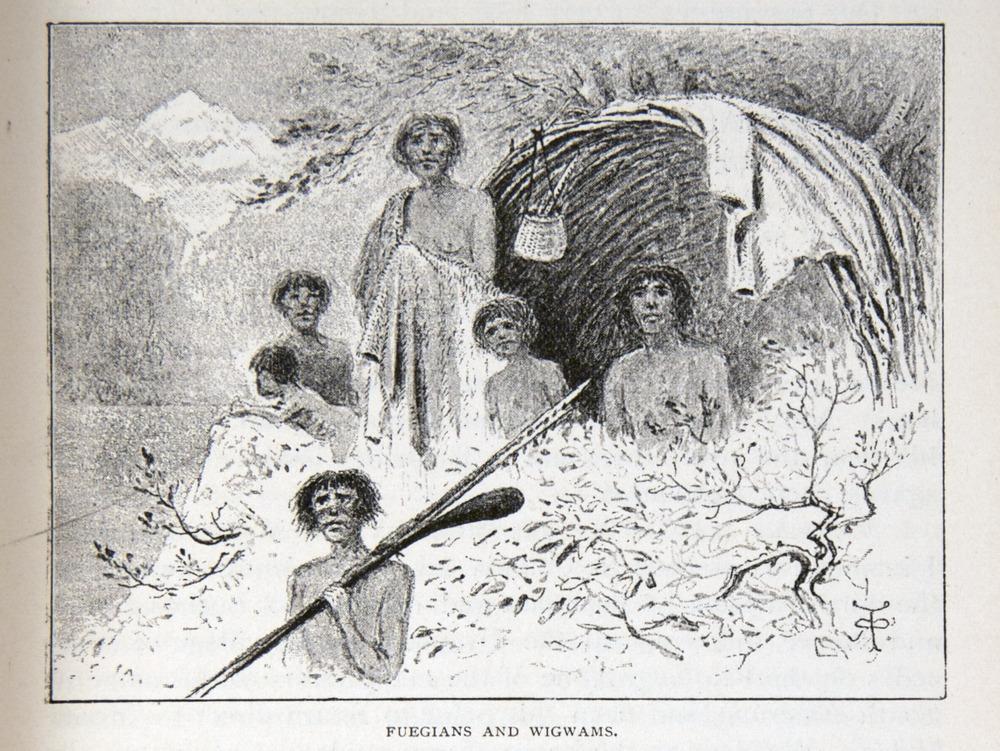 Image of Darwin-F64-1890-zzzz-det-151