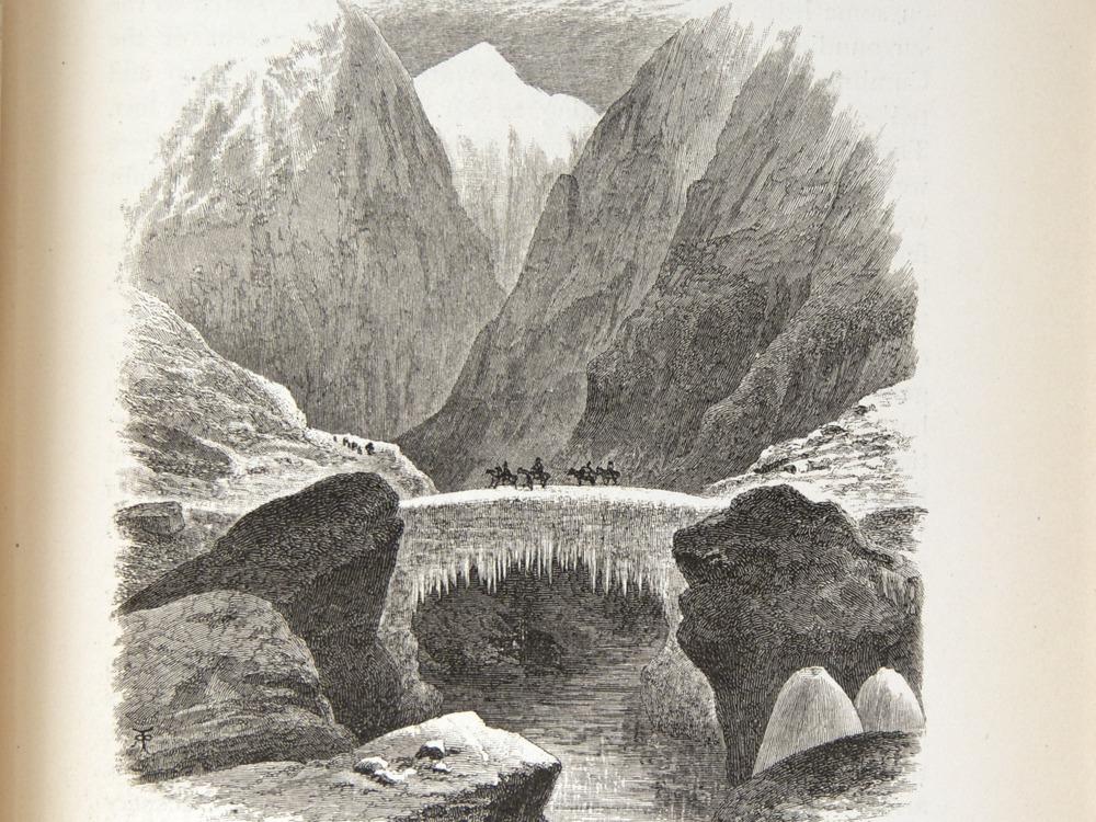 Image of Darwin-F64-1890-zzzz-det-357
