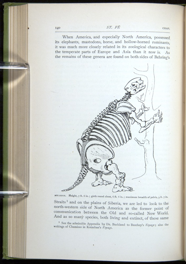 Image of Darwin-F64-1890-140