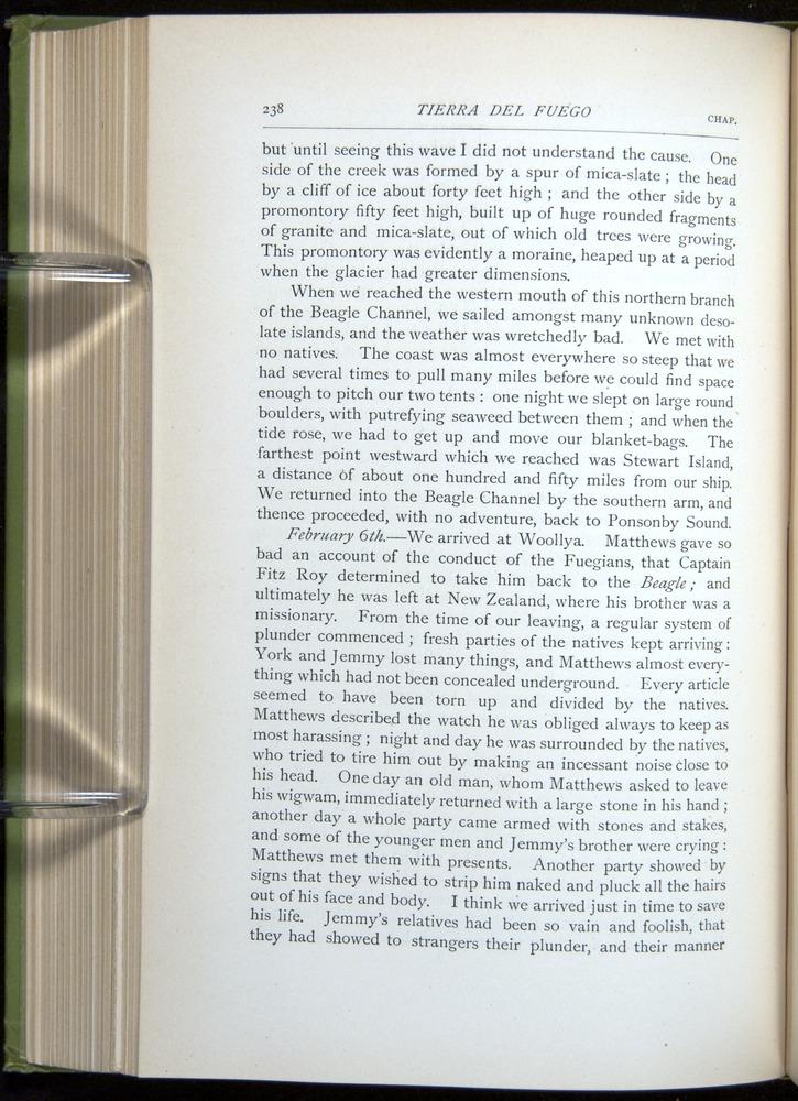 Image of Darwin-F64-1890-238