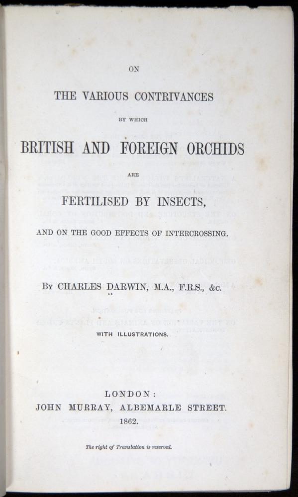 Image of Darwin-F800-1862-00000-tp