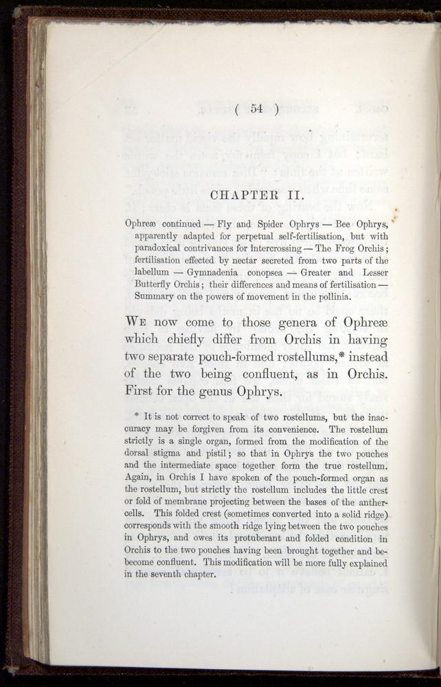 Image of Darwin-F800-1862-00054