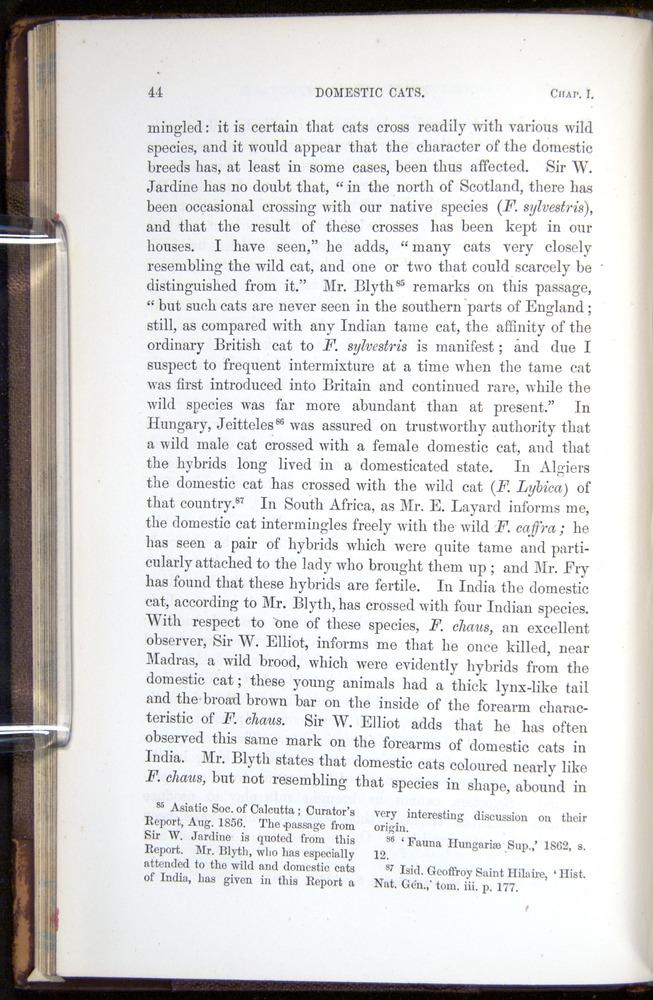 Image of Darwin-F878.1-1868-00044