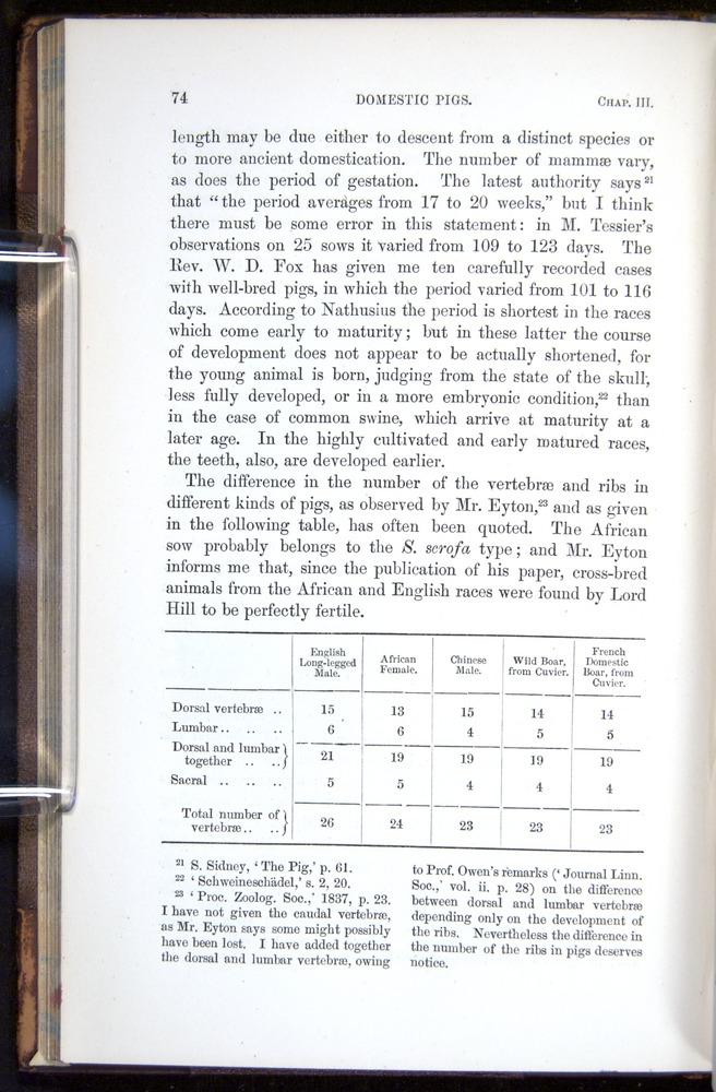 Image of Darwin-F878.1-1868-00074