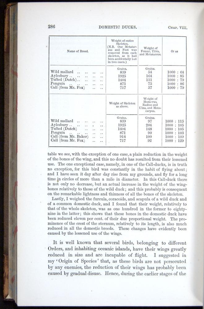 Image of Darwin-F878.1-1868-00286