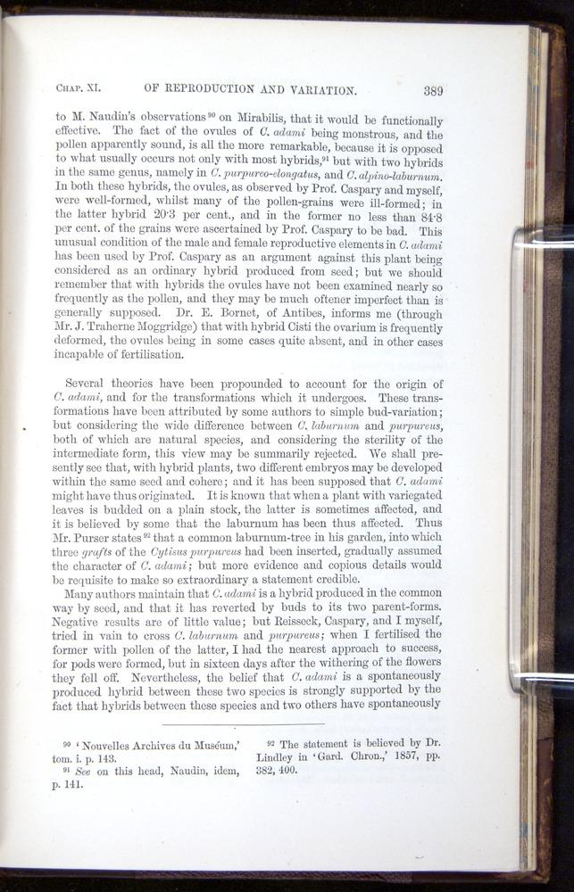 Image of Darwin-F878.1-1868-00389