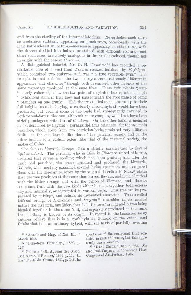 Image of Darwin-F878.1-1868-00391