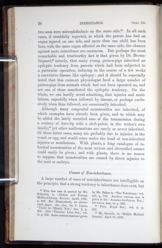 Image of Darwin-F878.2-1868-00024