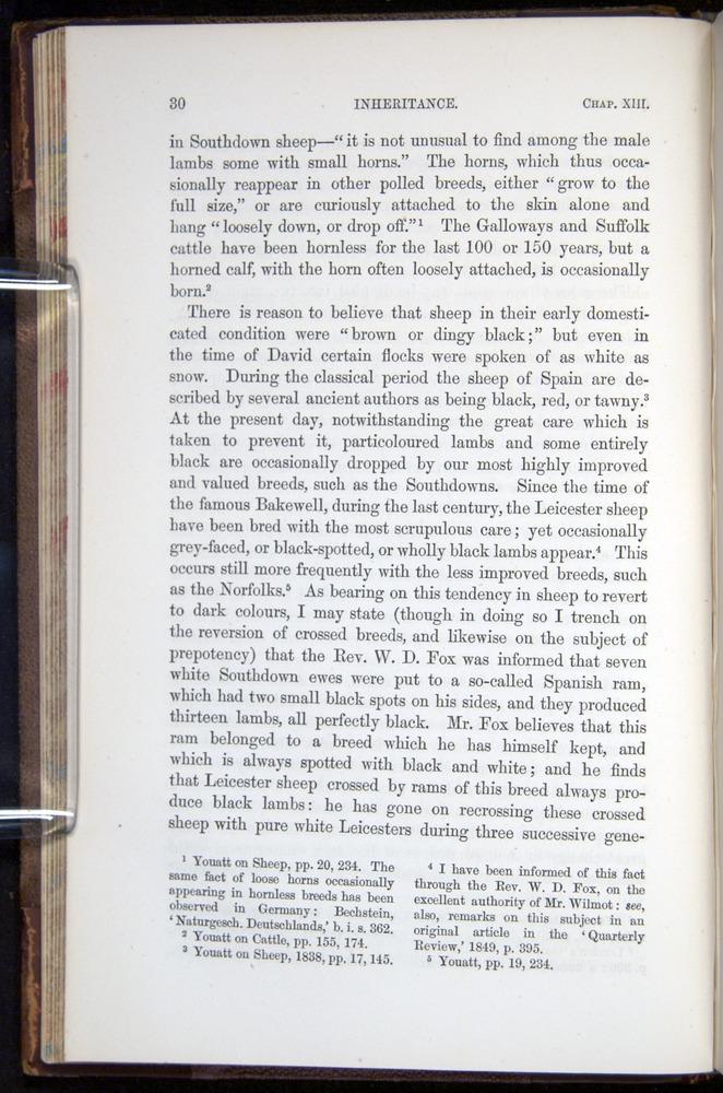 Image of Darwin-F878.2-1868-00030