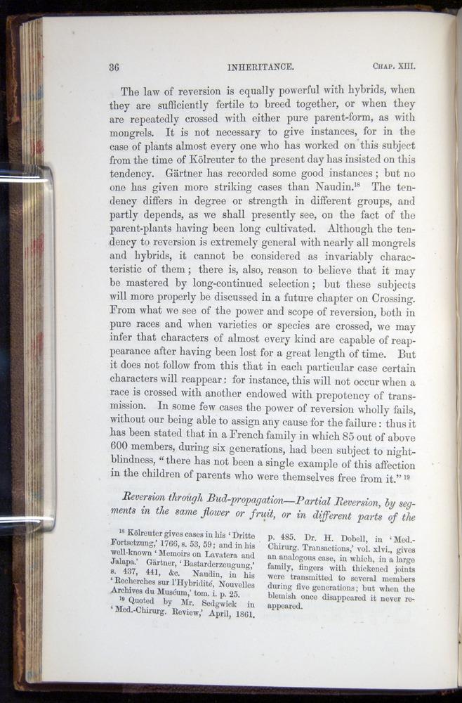 Image of Darwin-F878.2-1868-00036