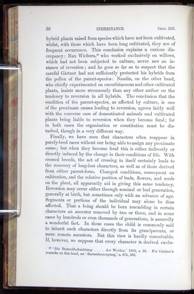 Image of Darwin-F878.2-1868-00050