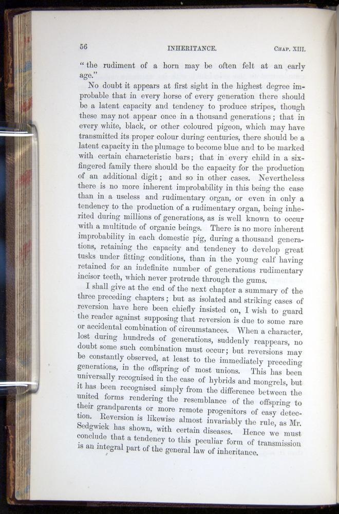 Image of Darwin-F878.2-1868-00056