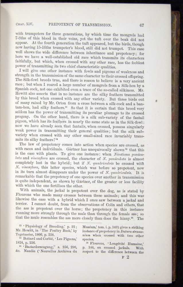 Image of Darwin-F878.2-1868-00067