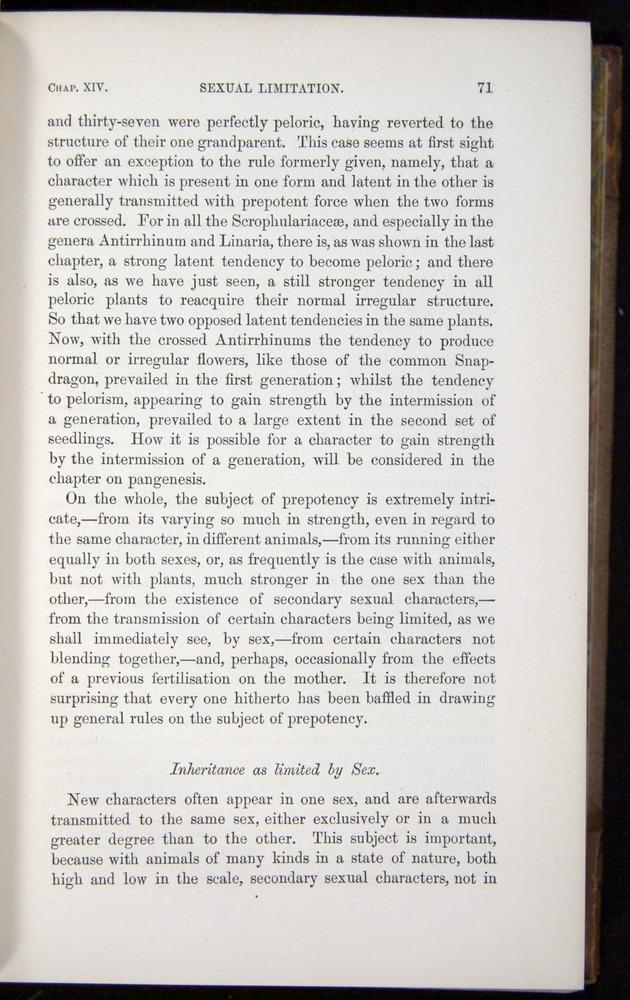 Image of Darwin-F878.2-1868-00071