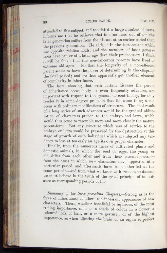Image of Darwin-F878.2-1868-00080