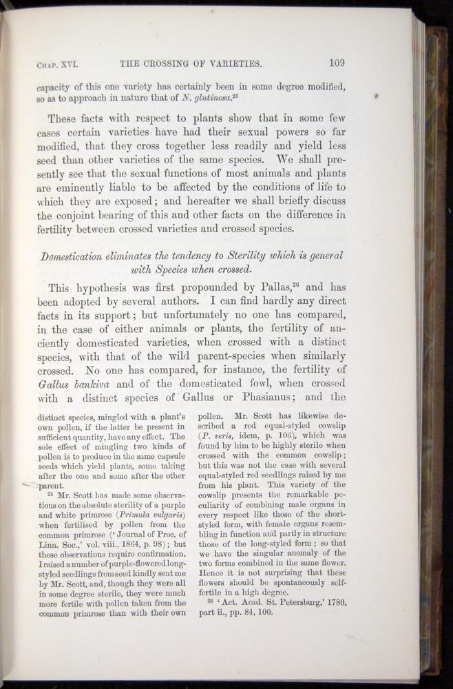 Image of Darwin-F878.2-1868-00109