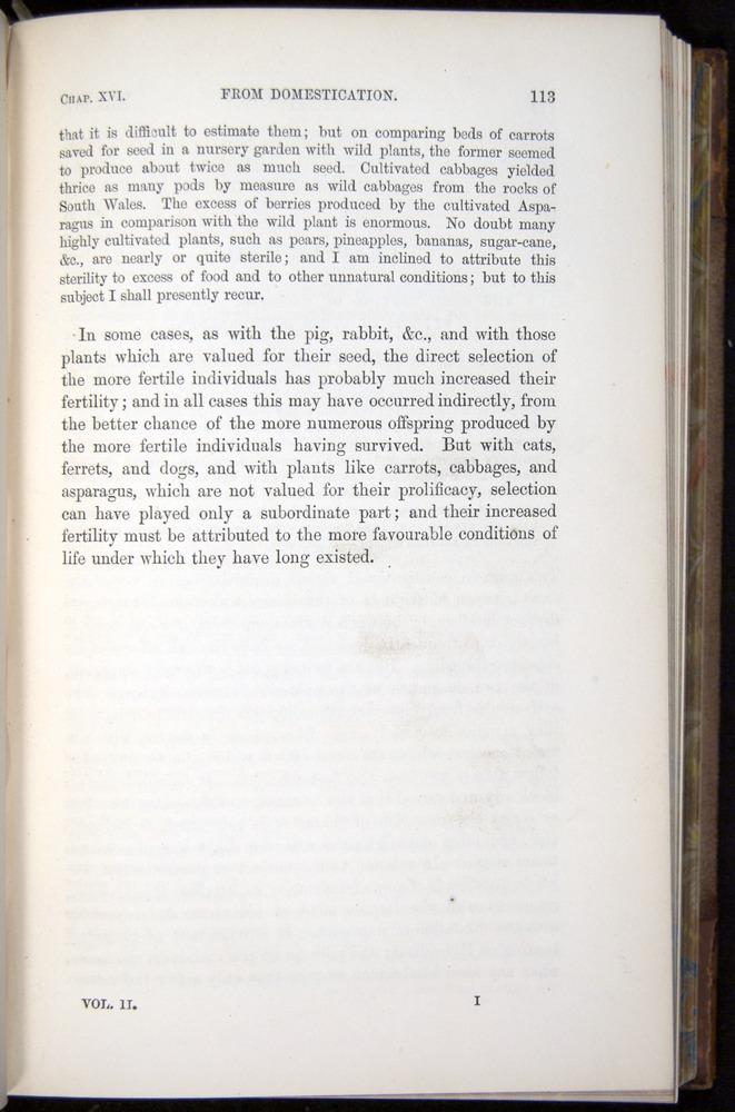 Image of Darwin-F878.2-1868-00113
