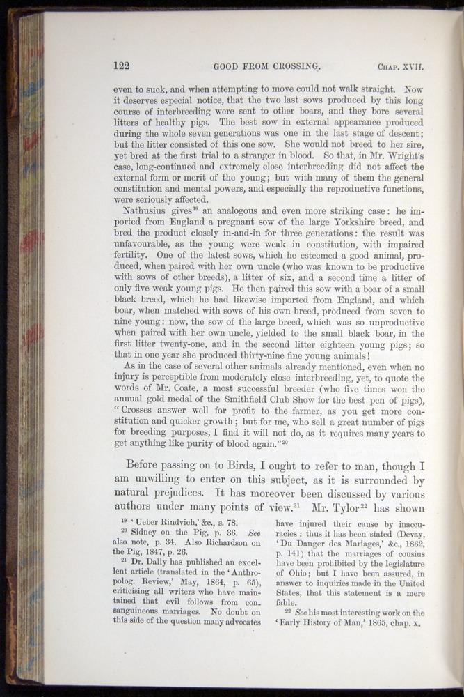 Image of Darwin-F878.2-1868-00122