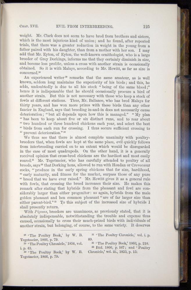 Image of Darwin-F878.2-1868-00125
