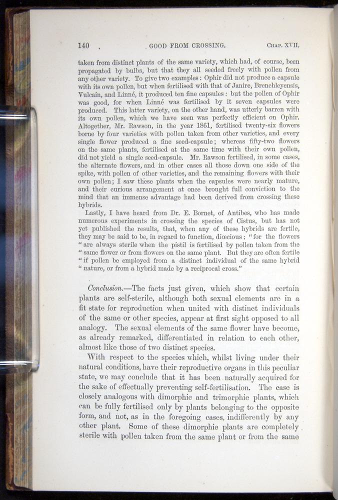 Image of Darwin-F878.2-1868-00140