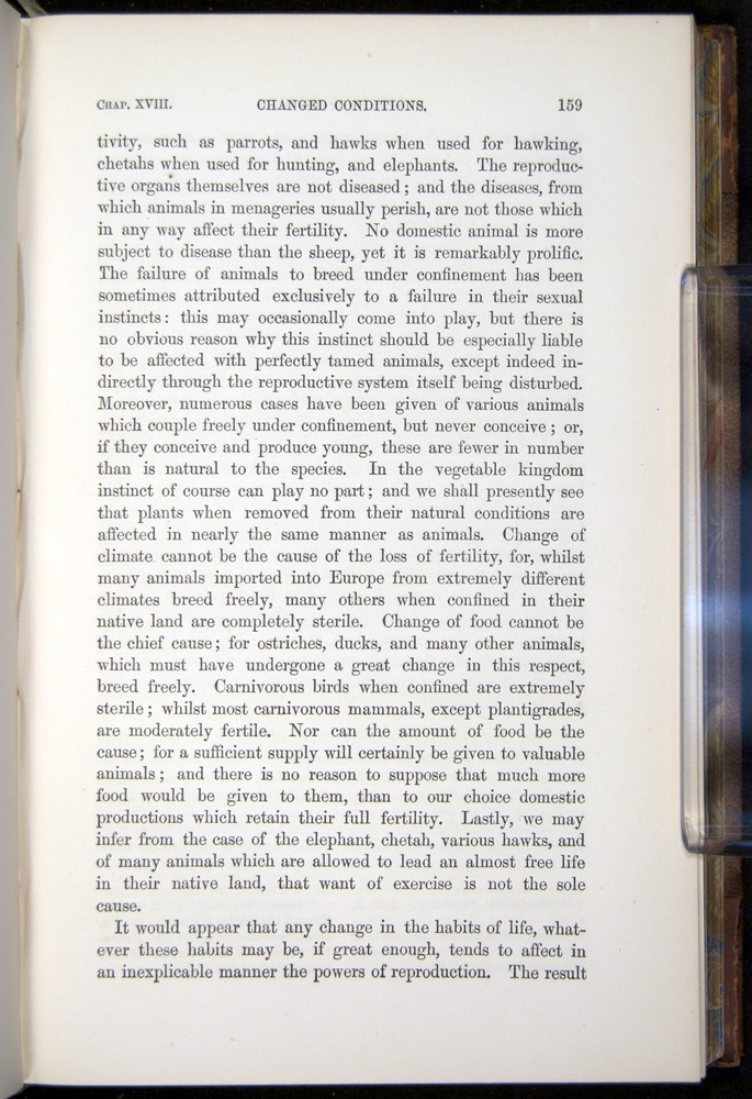 Image of Darwin-F878.2-1868-00159