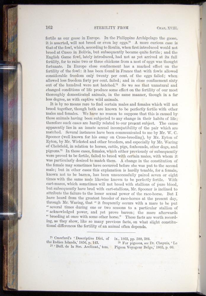 Image of Darwin-F878.2-1868-00162