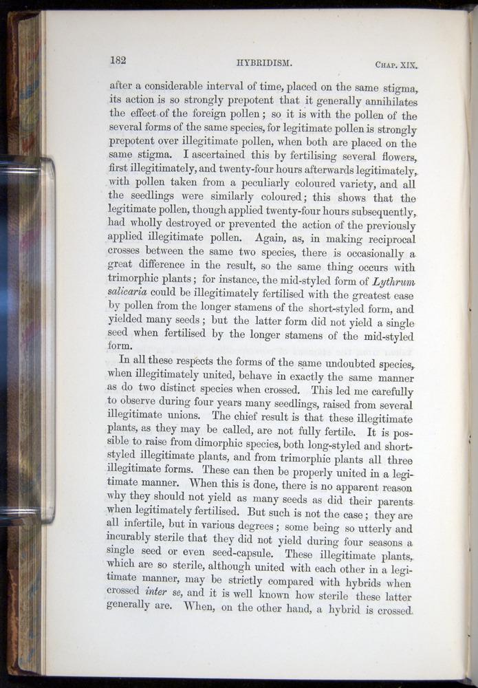 Image of Darwin-F878.2-1868-00182