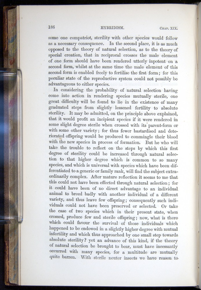 Image of Darwin-F878.2-1868-00186