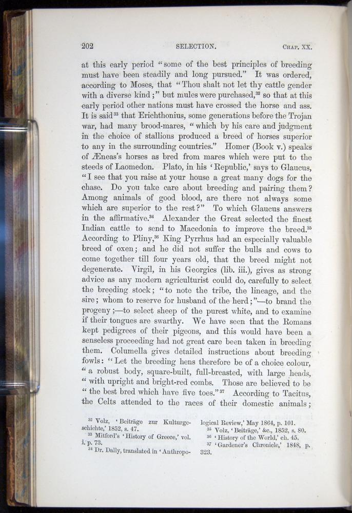 Image of Darwin-F878.2-1868-00202