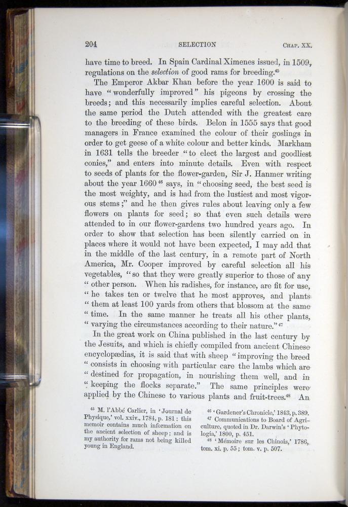 Image of Darwin-F878.2-1868-00204