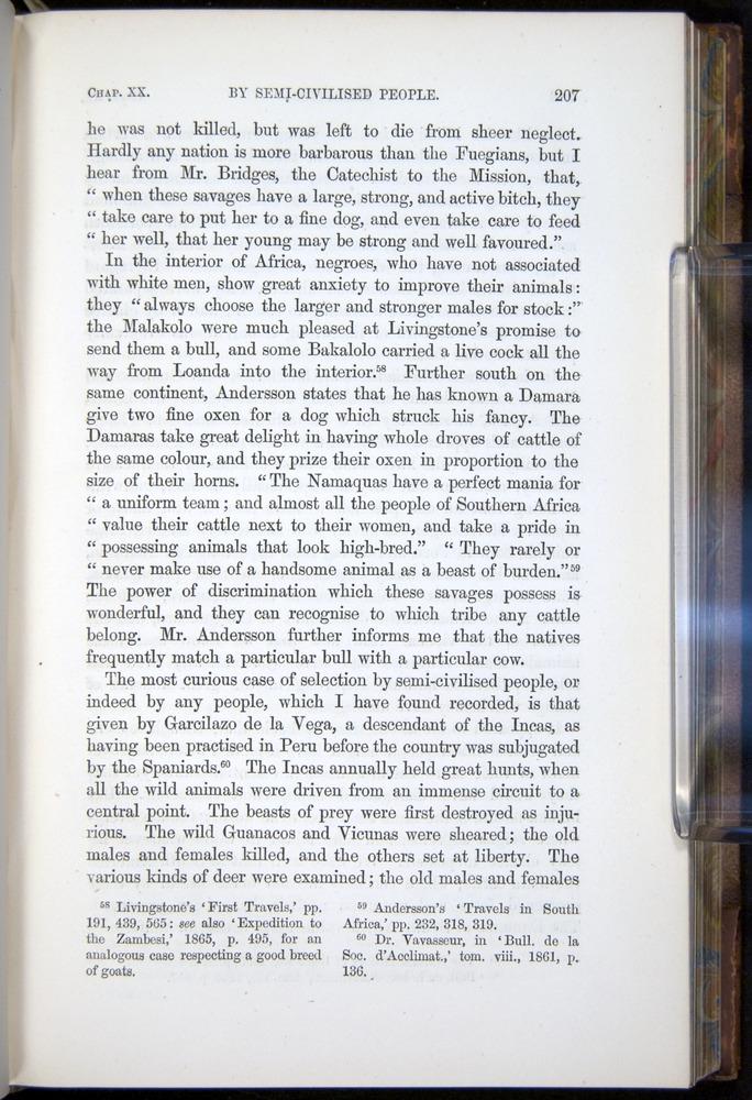 Image of Darwin-F878.2-1868-00207