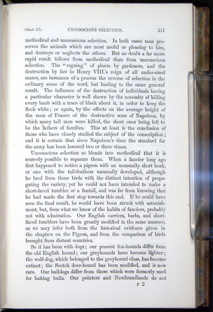 Image of Darwin-F878.2-1868-00211
