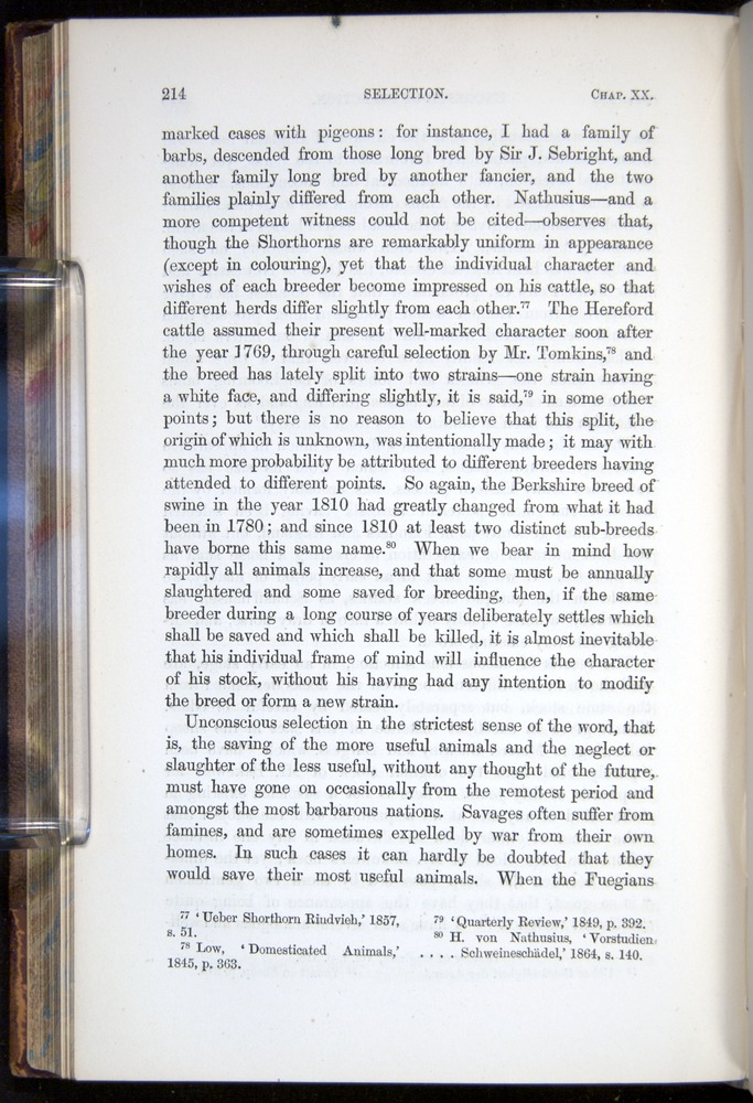 Image of Darwin-F878.2-1868-00214