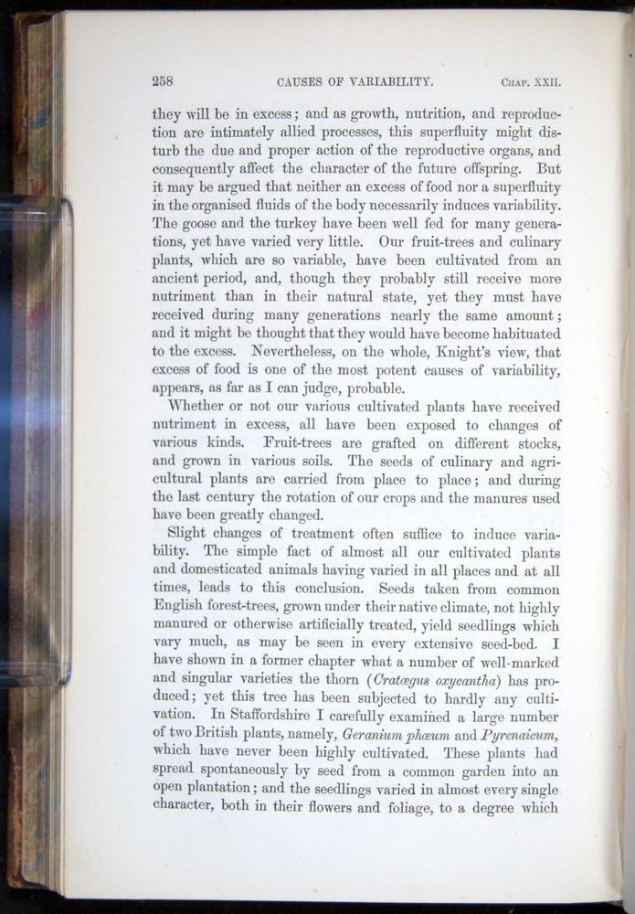 Image of Darwin-F878.2-1868-00258