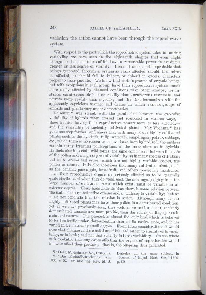 Image of Darwin-F878.2-1868-00268