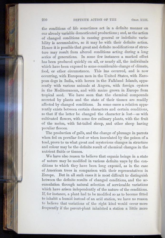 Image of Darwin-F878.2-1868-00290
