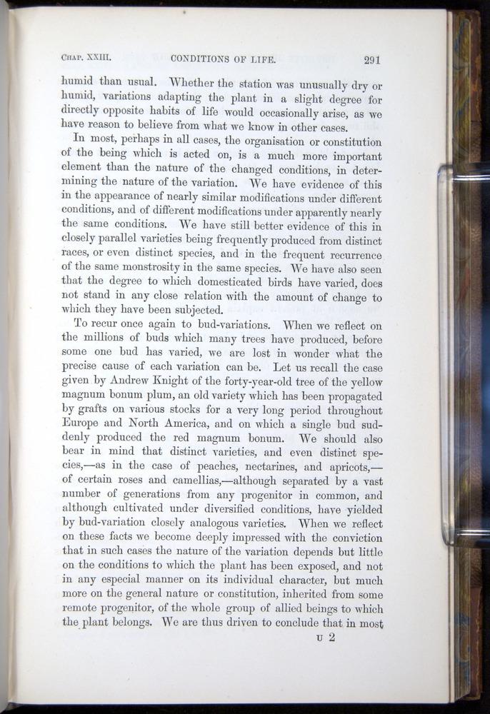 Image of Darwin-F878.2-1868-00291