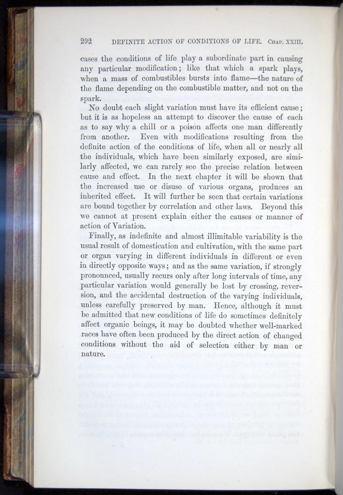 Image of Darwin-F878.2-1868-00292
