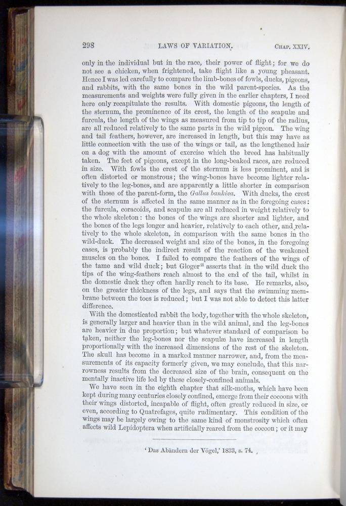 Image of Darwin-F878.2-1868-00298